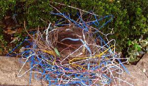 大田区ホームページ:カラスの巣...